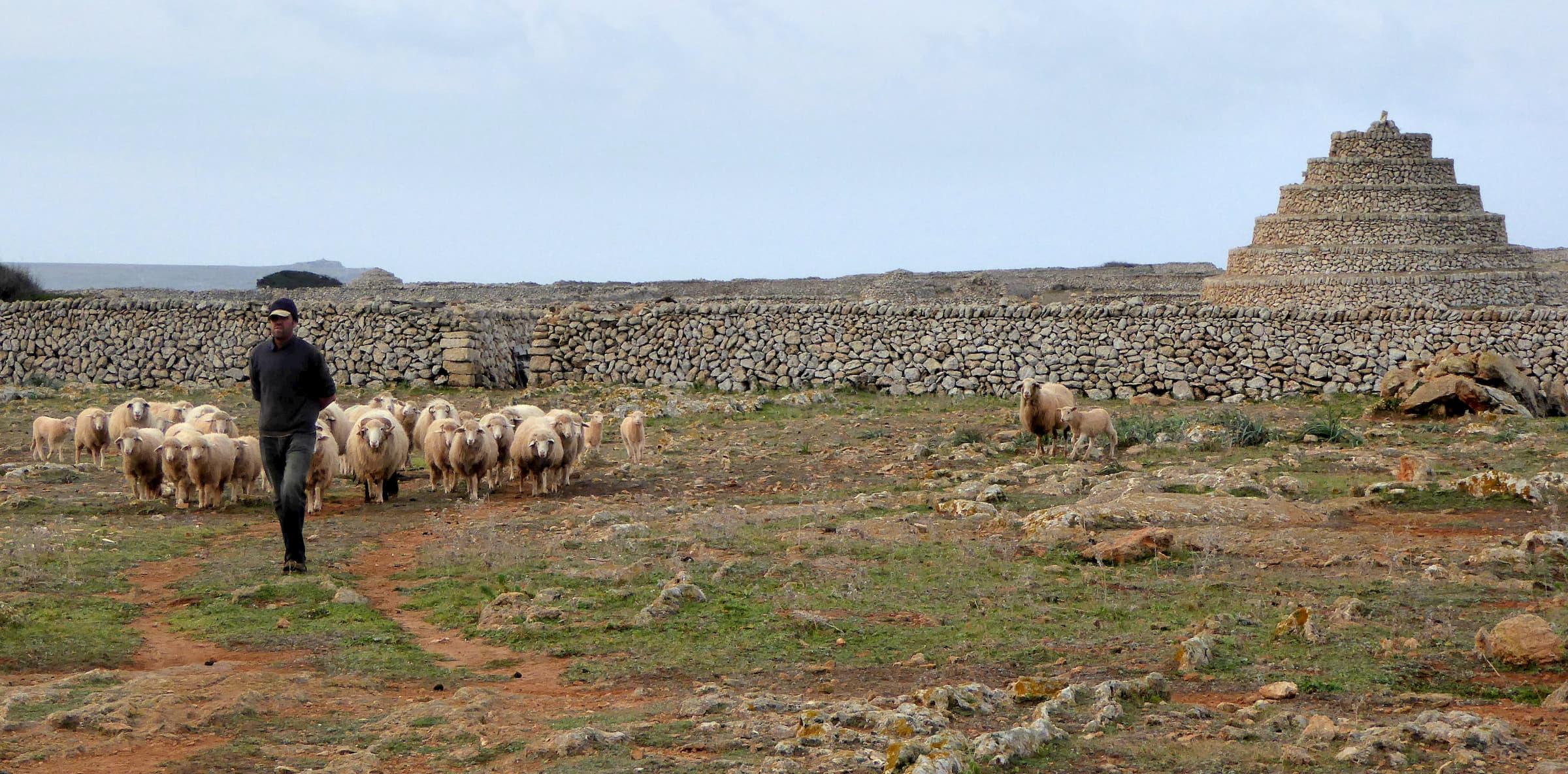 Punta Nati. Paisaje cultural y patrimonio etnologico en activo a través de la ganadería.